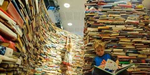 Библиотека семейного чтения № 239