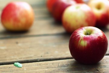 яблоня в районе куркино