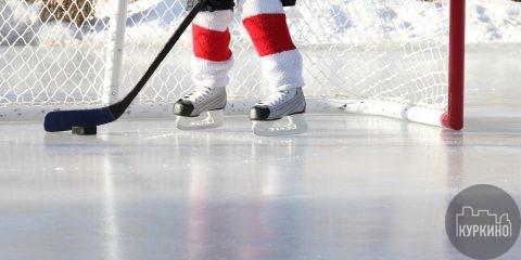 В учебно-тренировочном центре Новогорск прошел детский турнир по хоккею