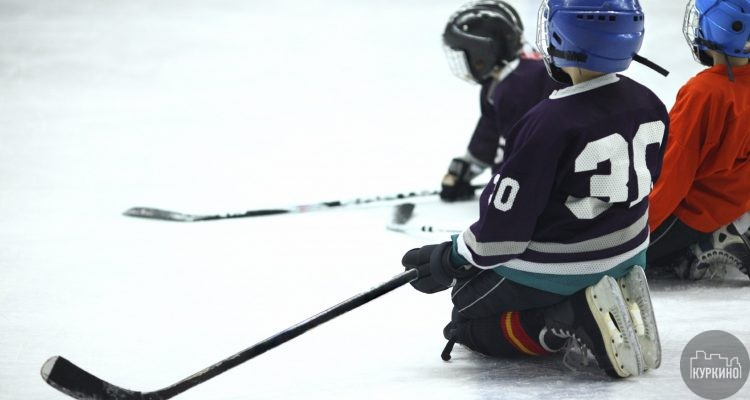хоккей в новогорске