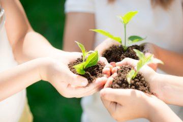 Экологический мастер класс в куркино для детей