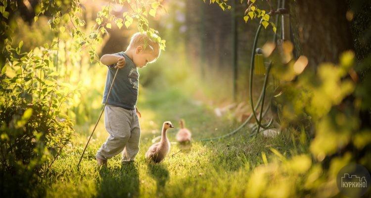 Кружок «Юные натуралисты» в Куркино