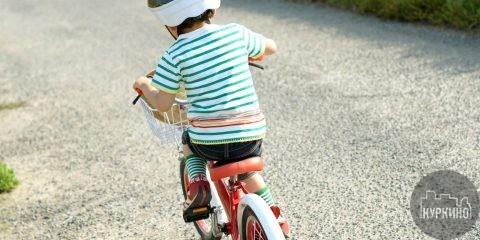 прокат велосипедов в химках