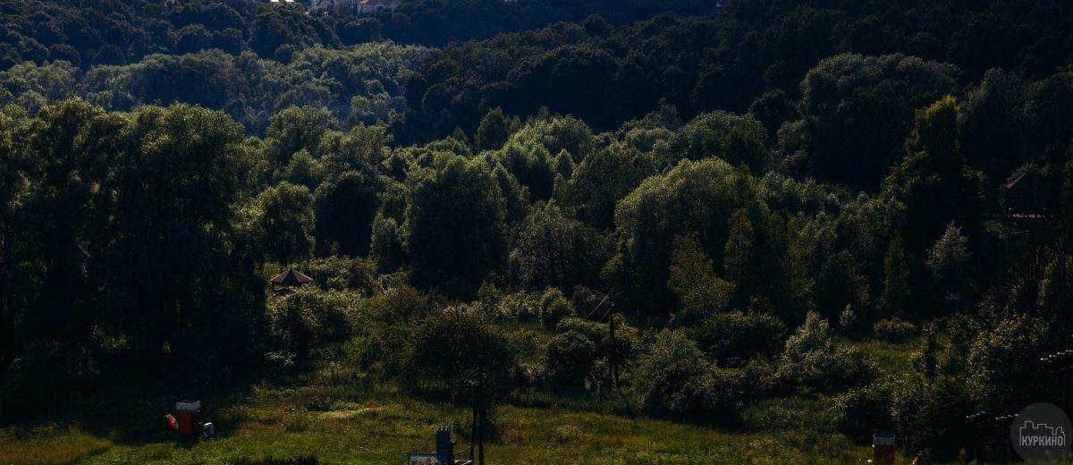 Парк долина реки сходни