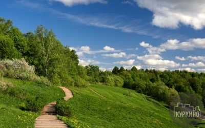 парк долина реки сходня