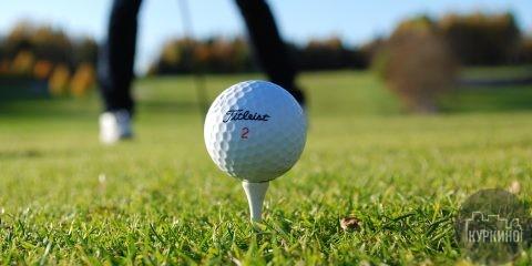 Лучшие гольфисты в Куркино