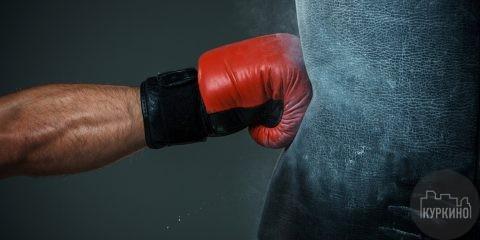 мастер класс по боксу в Новогорске