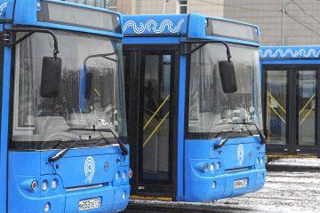 автобусы в куркино