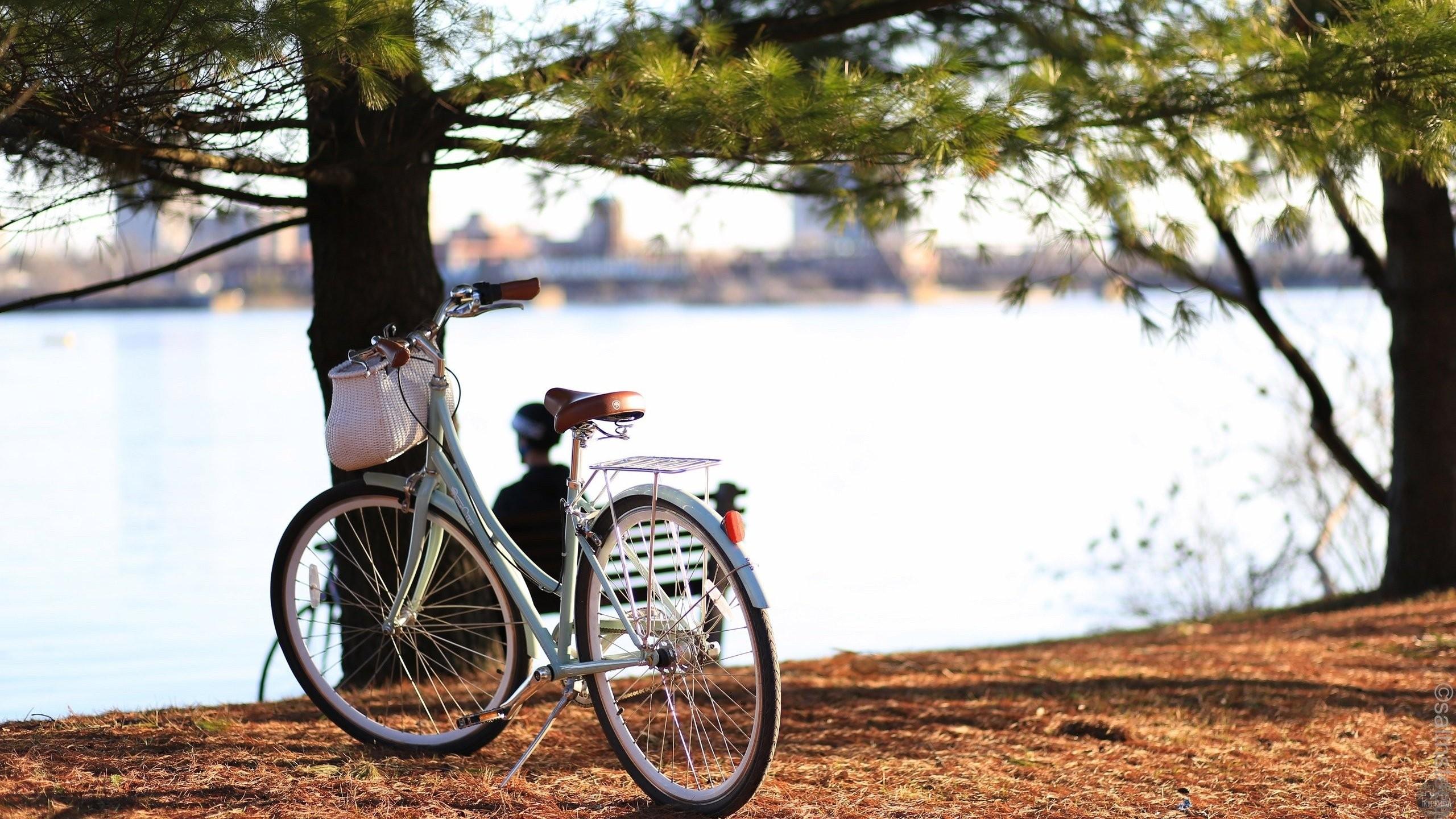 велосипеды в куркино