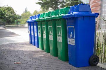 раздельный сбор мусора в куркино