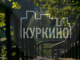 Виртуальная экскурсия в Куркино