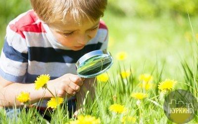 Возобновилась работа кружка «Юные натуралисты» в Куркино