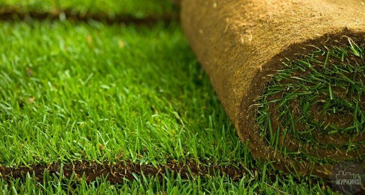 В Москве в течение лета будут проведены масштабные работы по понижению газонов ниже уровня бортового камня на 1-2 см.Всего предстоит благоустроить 3 млн кв. м. газона, срок исполнения работ - с 10 мая по 25 августа.