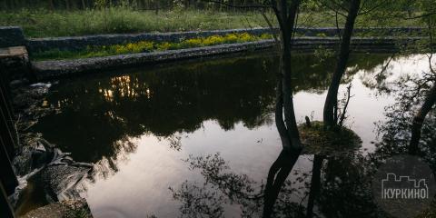 мутная вода в реке сходне