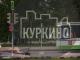 новый автобусный маршрут в куркино