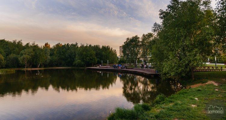Опрос: необходим ли общественный туалет в парке Дубрава?